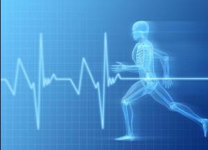 спорт | физкультура