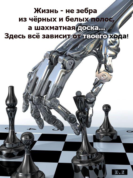 жизнь не зебра | Yul Ivanchey | Юл Иванчей