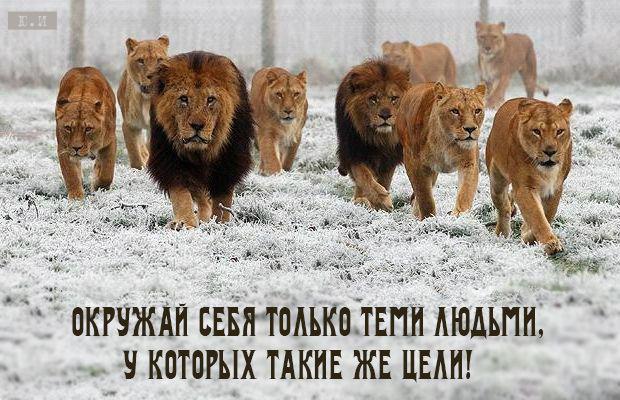люди_цели   Yul Ivanchey   Юл Иванчей