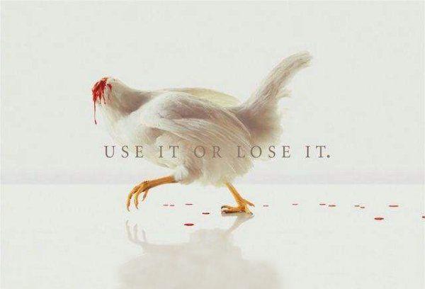 use it or lose it   Yul Ivanchey   Юл Иванчей