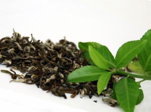 9 cancer-killing products   9 продуктов убивающие рак   зелёный чай