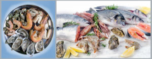 omega3-omega6-ratio | омега3-омега6 соотношение | юл иванчей