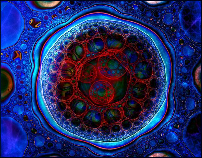 Биологическая клетка в картинках